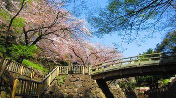 t_06)otonashi_4020.jpg