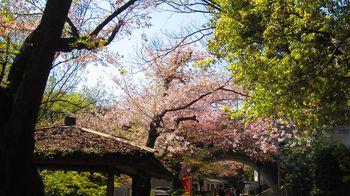 t_07)otonashi_4021.jpg