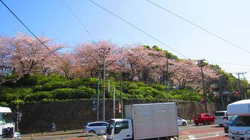 t_13)asukayama_4024.jpg