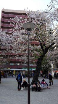 t_15)higashiikebukurokouen_20180331_151618.jpg